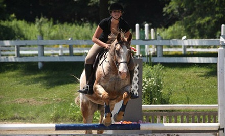 Horseback-Riding Lesson for One, Two, or Four, or One-Month Bronze Lease at The Ajax Riding Academy (Up to 78% Off)