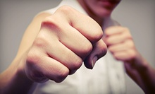 5 or 10 Adult MMA Classes at Trident Academy of Mixed Martial Arts (Up to 73% Off)