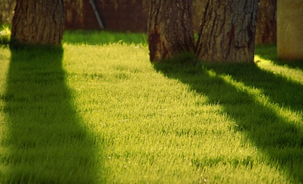 Lawn-Mowing Services from Remy Landscaping (Up to 52% Off). Three Options Available.