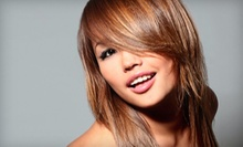 $27 for Haircut, Style, and Deep-Conditioning Treatment at The New You Hair Salon ($55 Value)