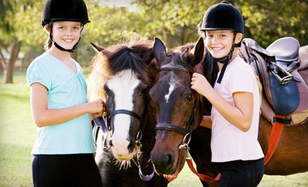 One, Two, or Four 60-Minute Horseback-Riding Lessons at Raintree Equestrian Center (Up to 55% Off)