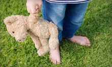 $10 for $20 Worth of Make-Your-Own Bears or Bear-Making Party for 6 or More at Country Bear Factory in Pigeon Forge