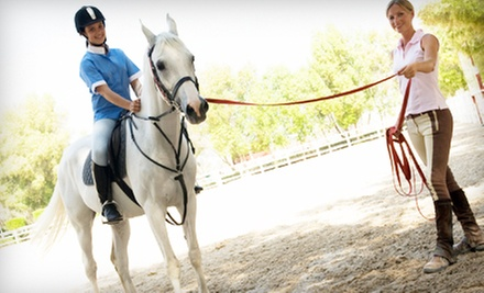 $22 for 60-Minute Private Horseback-Riding Lesson at Luton Riding Academy ($45 Value)