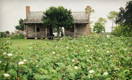 Admission for Two, Four, or Six to George Ranch Historical Park in Richmond (Up to 58% Off)