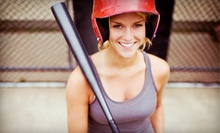 One or Five 30-Minute Batting-Cage Sessions at Baseball Unlimited Training Center (Up to 53% Off)