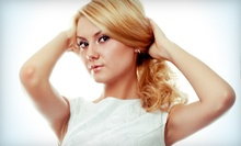 Haircut with Optional Highlights or Color at Design 8000 Hairstyling School (Up to 62% Off). Three Options Available.