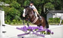 One or Three Private Horseback-Riding Lessons at WestWood Farms LLC (Up to 58% Off)