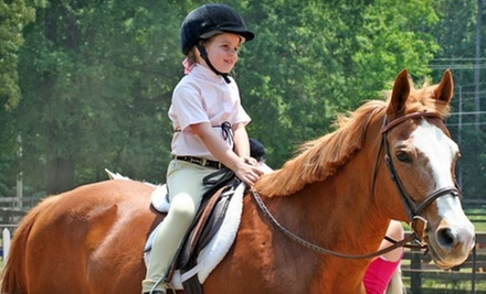 Private Horseback-Riding Lessons at Towne Lake Equestrian Club (Up to 62% Off). Three Options Available.