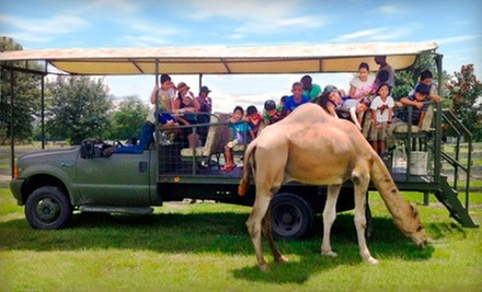 Safari Ride for Two or Four at Safari Wilderness Ranch (Up to 68% Off)