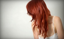 Haircut, Deep Conditioning, and Style with Optional Color or Highlights at Rodney Wilkins Hair Design (Up to 56% Off)