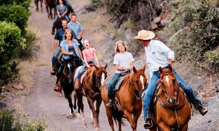 90-Minute Horseback Trail Ride for One or Two from Horsin' Around Adventures (Up to 55% Off)