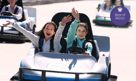 $16 for a One-Day Karts Plus Pass for One Person at Swings-N-Things Family Fun Park ($30 Value)