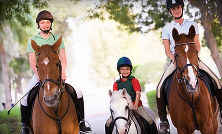 One, Three, or Five Private, One-Hour Horseback-Riding Lessons at Rancho La Rosa (Up to 60% Off)