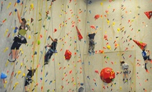 $89 for a Three-Day Summer Climbing Camp for Kids Aged 815 at Ibex Climbing Gym ($200 Value). Nine Options Available.