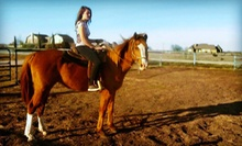 One, Two, or Three Private Horseback-Riding Lessons or Trail Rides at Chisholm Trail Rides (Up to 56% Off)