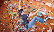 Rock-Climbing Day Pass with Basic Belay Class, Seven-Visit Pass, or Family Membership at Rocknasium (Up to 51% Off)