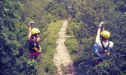 Three-Hour Zipline Tour for Two or Four People at White River Zip Lines (Up to 55% Off)
