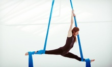 Aerial Silks, Boot Camp, and Pole Fitness Classes at DL Fitness Studios (Up to 54% Off). Three Options Available.