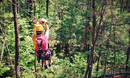 90-Minute Complete Zipline Tour for One or Dare Ya! Ride for Two at Daredevil Ziplines (Up to 54% Off)