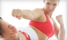10 Kickboxing Classes or One Month of Unlimited Kickboxing Classes at Absolut Fitness Studio (Up to 80% Off)