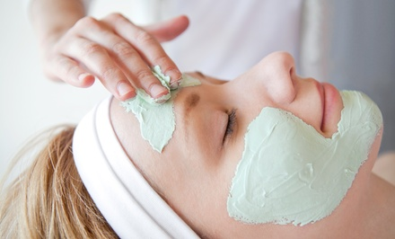 $49 for One Custom Facial with Microdermabrasion at Absolutely Fabulous Spa ($110 Value)