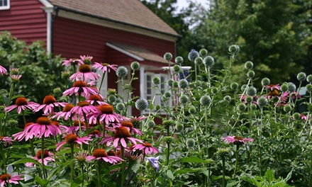 Visit for One Adult or Two Adults and Two Children to Old Salem Museums & Gardens (Up to 57% Off)