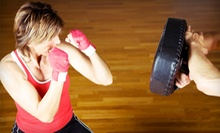 10 or 20 Cardio-Kickboxing or Zumba Classes at TeamKat Martial Arts &amp; Wellness (75% Off)