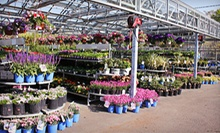 $20 for $40 Worth of Garden Supplies and Plants at Orange Garden Center