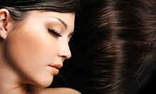 One or Two Brazilian Blowouts at Orange Salon (Up to 67% Off)