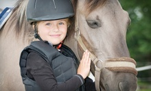 $59 for a Two-Hour Horseback-Riding Birthday Party for Up to 10 Kids at Raynee Days Riding Stable ($125 Value)