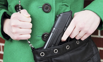 Four-Hour Civilian CWP or CCW Course for One or Two at Allstate Training Academy (Up to 43% Off)