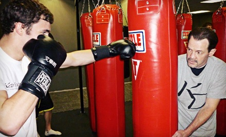4 or 6 Weeks of Boxing, Kickboxing, and Wrestling Classes at Kaminari Dojo Mixed Martial Arts Academy (Up to 74% Off)