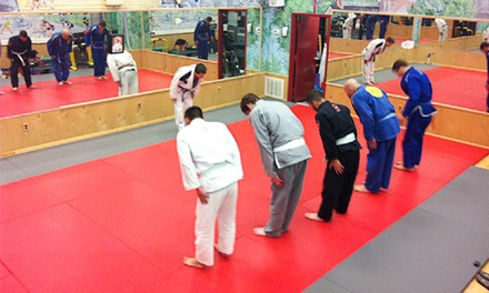 One Month Unlimited Adult Membership or 10 Adult Classes at Green Jiu Jitsu (Up to 68% Off)