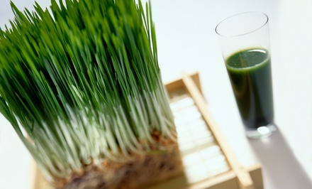 Three-, Five-, or Seven-Day Juice-Cleanse Package at The Love Dynasty, LLC (Up to 56% Off)