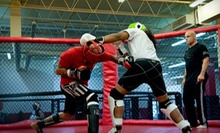 10 or 20 Mixed-Martial-Arts Classes at Strong Style Mixed Martial Arts (Up to 85% Off)