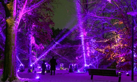 Illumination: Tree Lights at The Morton Arboretum on November 21–December 18 (Up to 36% Off)