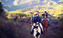 Weekday or Weekend 90-Minute Horseback Trail Ride with Instruction for One or Two from Connemara Ranch (Up to 56% Off)
