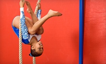 One Week or Five Drop-in Days of Camp or Birthday Party for Up to 20 Kids at Monmouth Gymnastics Academy (Half Off)