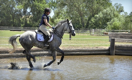 One, Three, or Five 45-Minute Horseback Riding Lessons at Byron Equestrian (Up to 70% Off)