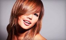 Haircut and Conditioning with Option for Color or Partial or Full Highlights at Piccolos' Beauty Salon (Up to 52% Off)