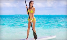 Stand-Up-Paddleboard Class for One, Two, or Four with Equipment from Paddle Sport Performance (Up to 66% Off)