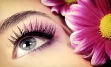 Cluster Eyelash Extensions or Mink Eyelash Extensions with Option for Touchup at Paper Doll Beauty Bar (Up to 67% Off)