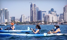 $39 for a Three-Hour Sea Lion or Coronado Island Kayaking Tour for Two from Family Kayak Adventure Center