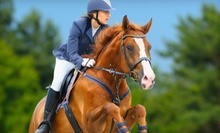 One or Two 60-Minute Private Horseback-Riding or Vaulting Lessons at Talisman Farm (Up to 54% Off)