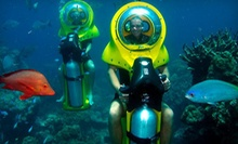 $95 for a Submarine-Eco-Scooter and Turtle-Watching Adventure from Island Water Sports Hawaii ($198 Value)