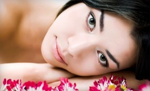 Spa Facial with Option for a Paraffin Hand Treatment at Skin Visions (Up to 52% Off)