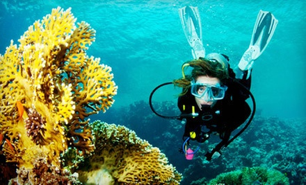 Discover Scuba Course for One or Two at Seascapes USA (Up to 62% Off)