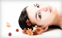 Skincare Services at Elite Medical Skin and Laser Center (Up to 79% Off). Four Options Available.