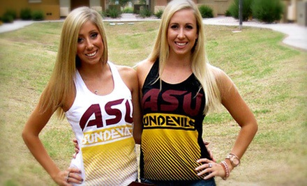 $15 for $30 Worth of Collegiate Sports Apparel from Flying Colors Apparel