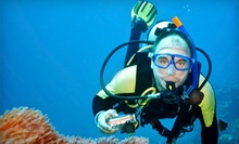 Open-Water Diver Scuba-Certification Course for One or Two at Blue Sea Adventures (Up to 57% Off)